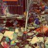 budget rubbish removal